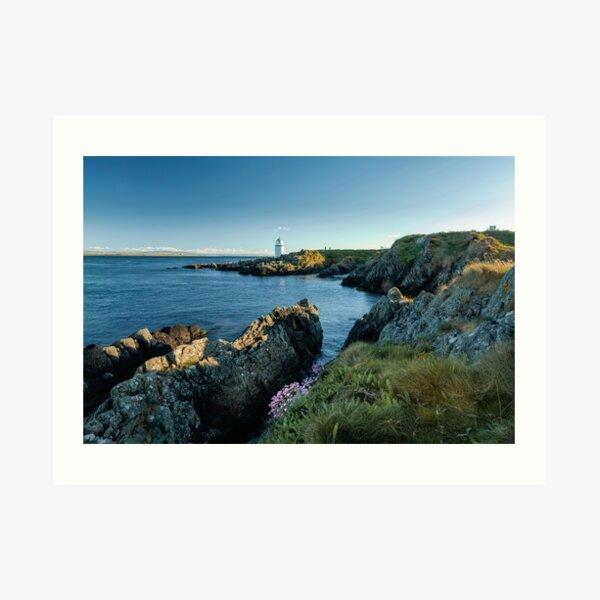 Warren lighthouse, Greencastle,Donegal Art Print