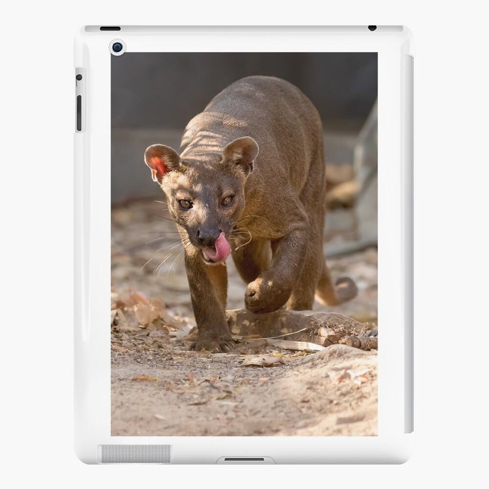 Prowling fossa iPad Case & Skin
