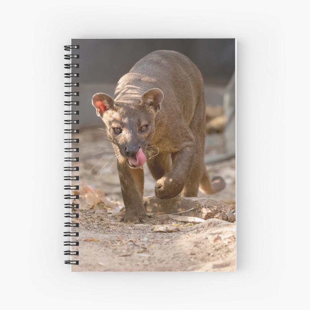 Prowling fossa Spiral Notebook