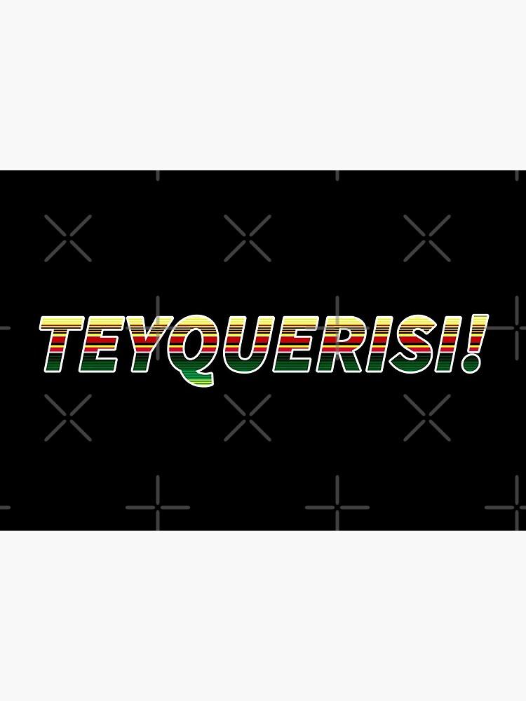TEYQUERISI! Serape Pattern by that5280lady