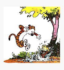 Calvin and Hobbes Playground Photographic Print