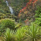 Karekare Falls by Werner Padarin