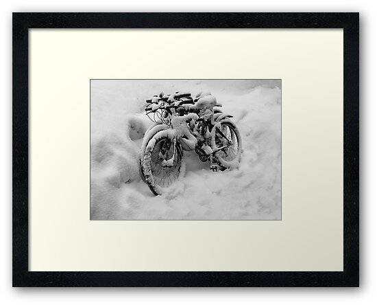 Three Bicycles in Black and White by Sarah McKoy