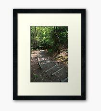 Walking down Leigh Hill Framed Print