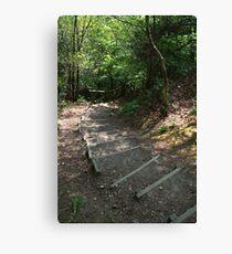 Walking down Leigh Hill Canvas Print