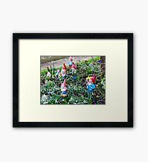 Garden Gnome VRS2 Framed Print