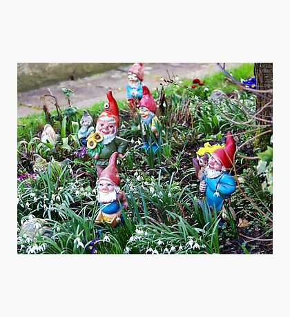 Garden Gnome VRS2 Photographic Print