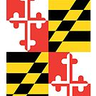 Maryland Flag Graphic Tee by canossagraphics