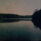 Nightfall by OLIVIA JOY STCLAIRE