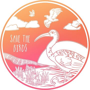¡Salva a los pájaros! de Chikagi