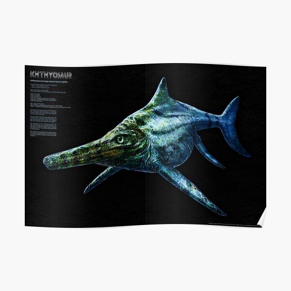 Ichthyosaur -  Large extinct marine reptile Poster