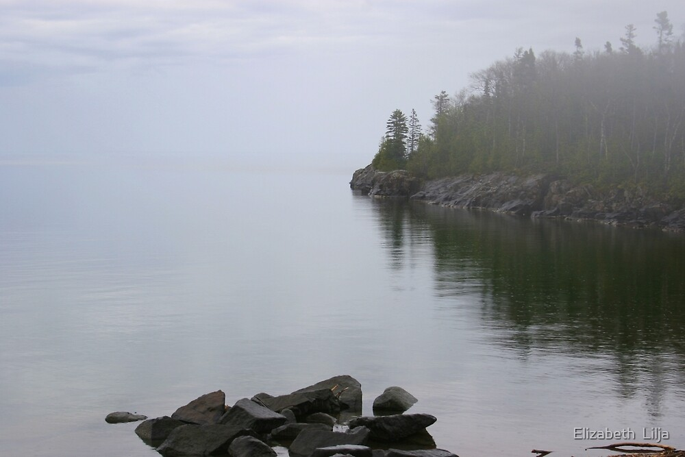 Misty Lake by Elizabeth  Lilja