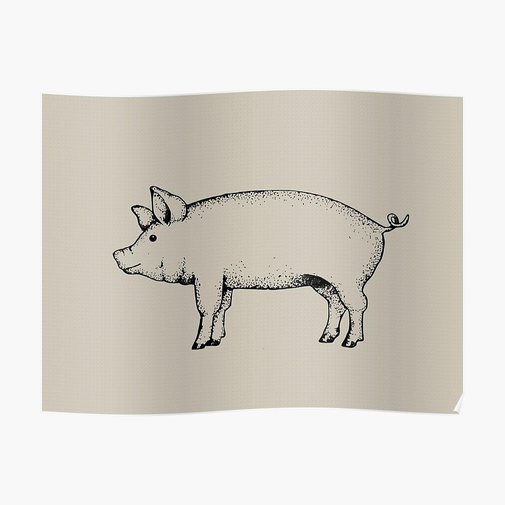 Pig outline art standing pig hog drawing poster