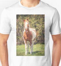 Funny Humor I Unisex T-Shirt