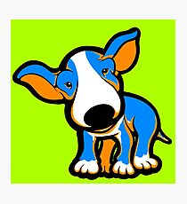 IrnBru English Bull Terrier Puppy  Photographic Print