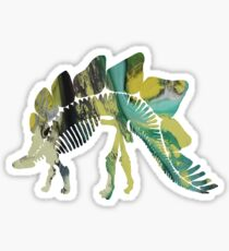 Stegosaurus skeleton Sticker