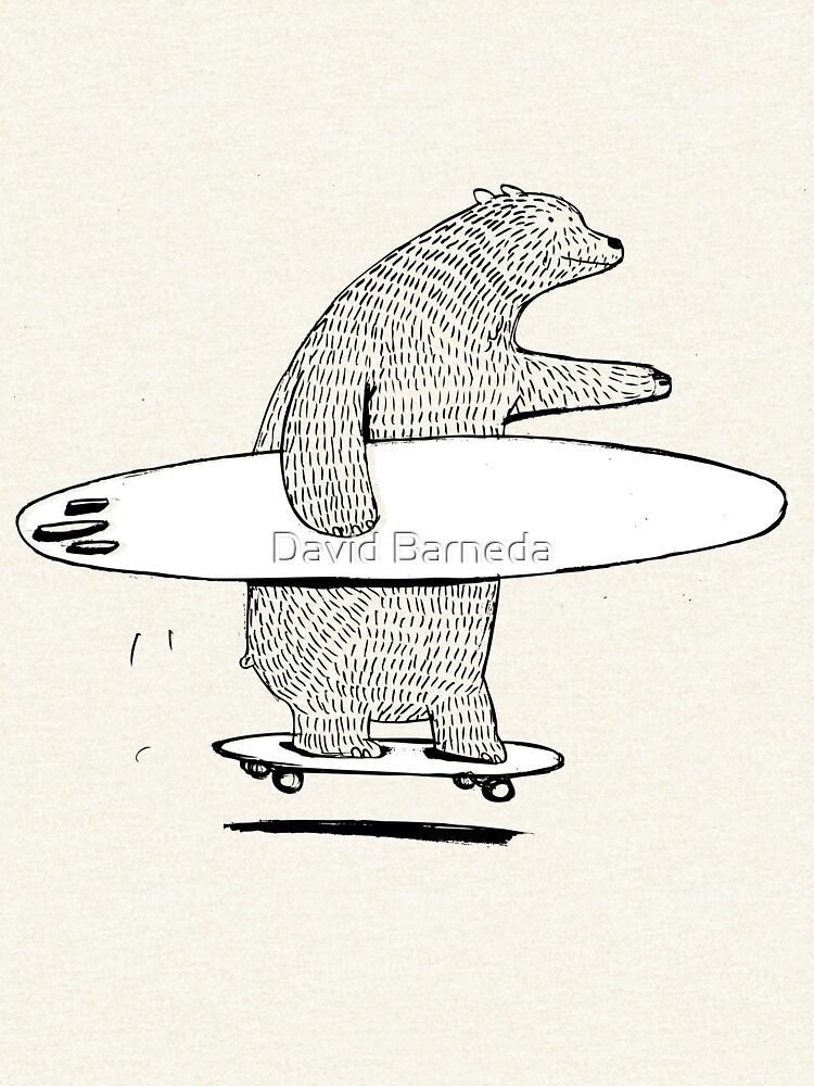 Surfen gehen von barneda
