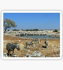 Animal Diversity at Okaukeujo Lagoon Sticker