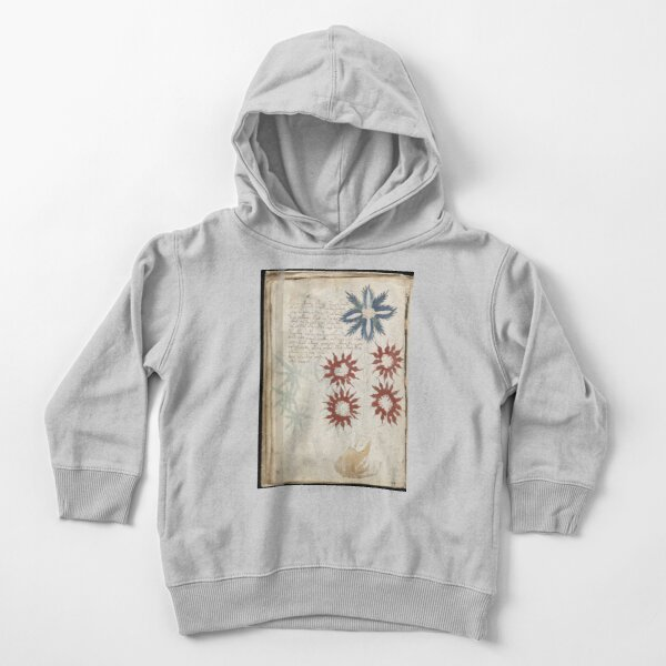Voynich Manuscript. Illustrated codex hand-written in an unknown writing system Toddler Pullover Hoodie