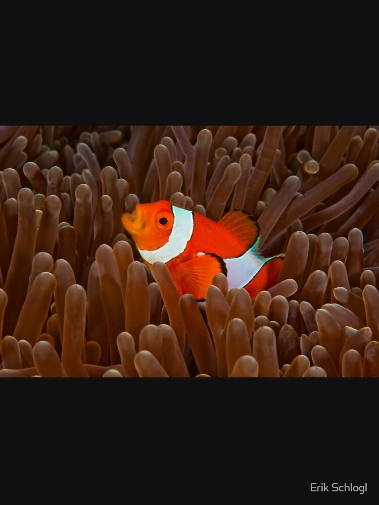 Nemo's Cry by eschlogl