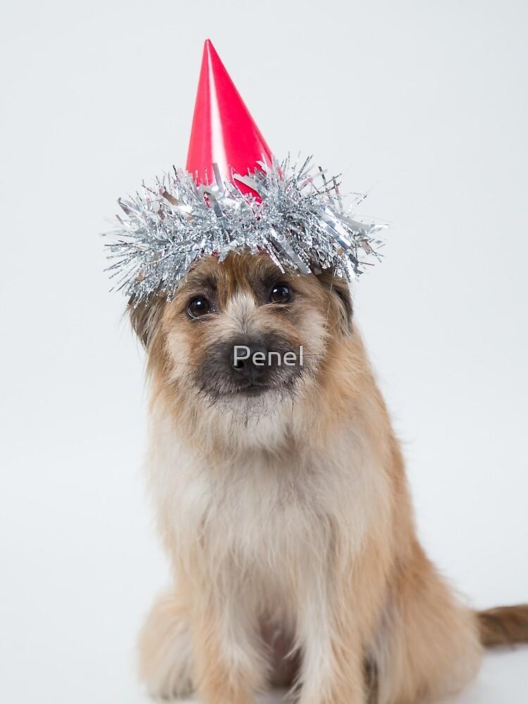 Celebrations! by Penel