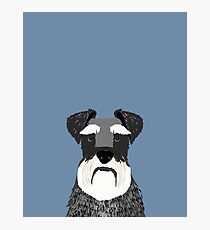 Schnauzer navy blue grey black and white funny pet friendly dog gift for dog person  Photographic Print