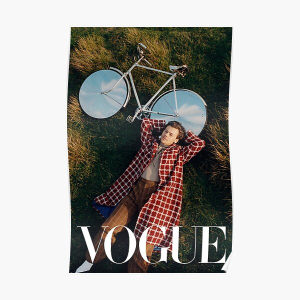 Styles Vogue Vélo Poster