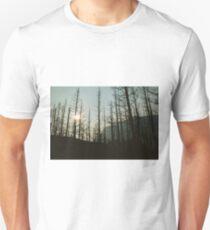 Glacier Natl Park #5 Unisex T-Shirt