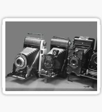 Vintage cameras photography design Sticker