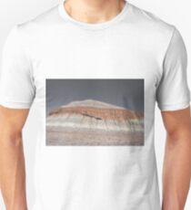 Painted Rock Natl Park  Unisex T-Shirt