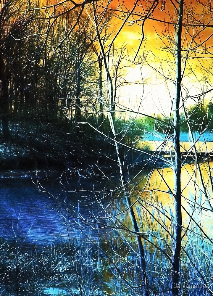 Sunlit River by Shawna Rowe