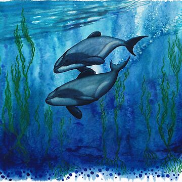 """Maui's Magic"" by Amber Marine ~ Watercolor maui's dolphin painting, art © 2016 by AmberMarine"