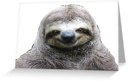 Lächelnde Faultier von emilyosman