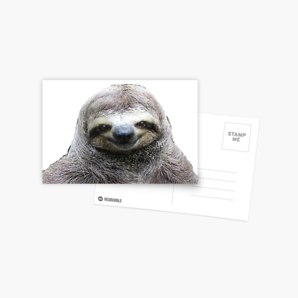 Lächelnde Faultier Postkarte