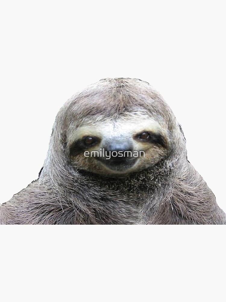 Smiling Sloth by emilyosman