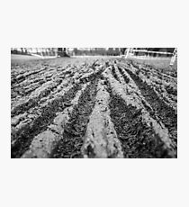 Mud Grooves Photographic Print