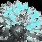 Neon Blue Flower by Angela Lance