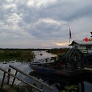 Airboat in the Everglades by Angela Lance
