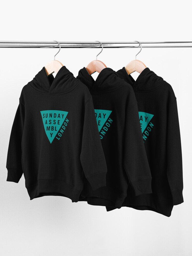 Alternate view of Teal Logo Toddler Pullover Hoodie