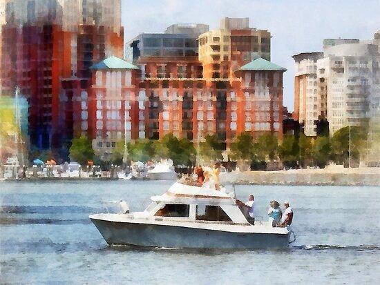 Maryland - Cabin Cruiser by Baltimore Skyline by Susan Savad