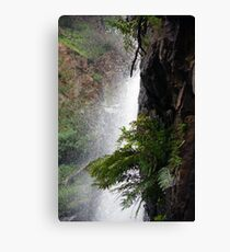 Outcropping Canvas Print