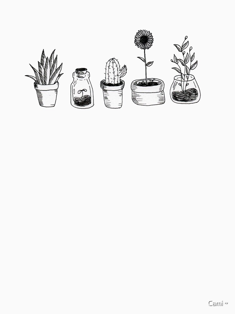 4 Pflanzen sind besser als 3, aber wiederum 5 ist besser von Nutellalover15