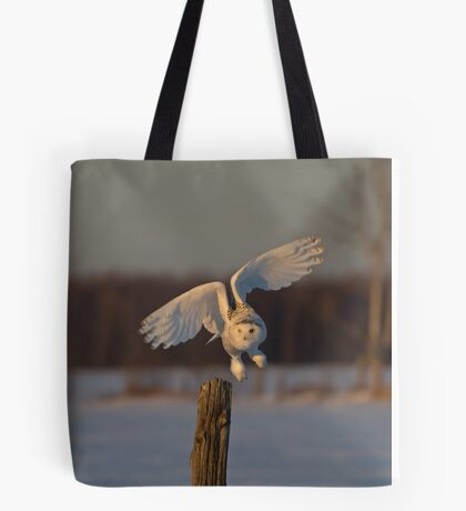 Snowy Owl taking off Tote Bag