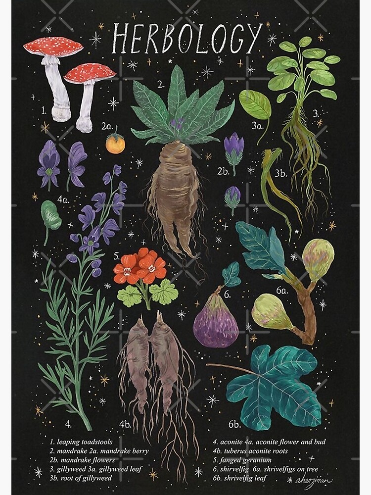 Herbology by glossyheaven