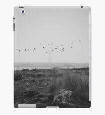 Cape Sable Birds iPad Case/Skin