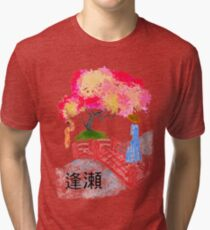 Cita Secreta Tri-blend T-Shirt