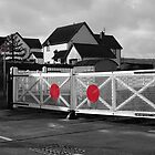 Level crossing by frogs123
