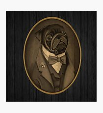Nobility Dogs Photographic Print