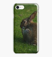 Wild Rabbit Pondering iPhone Case/Skin