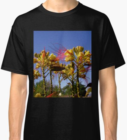 Bird of Paradise flowers Classic T-Shirt